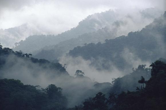 monteverde from phombo