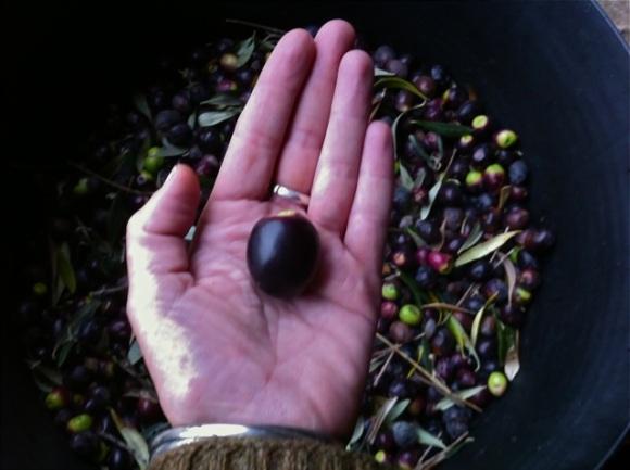 olives5